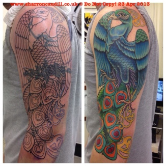 Peacock cover up