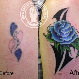 Rose-cover-up
