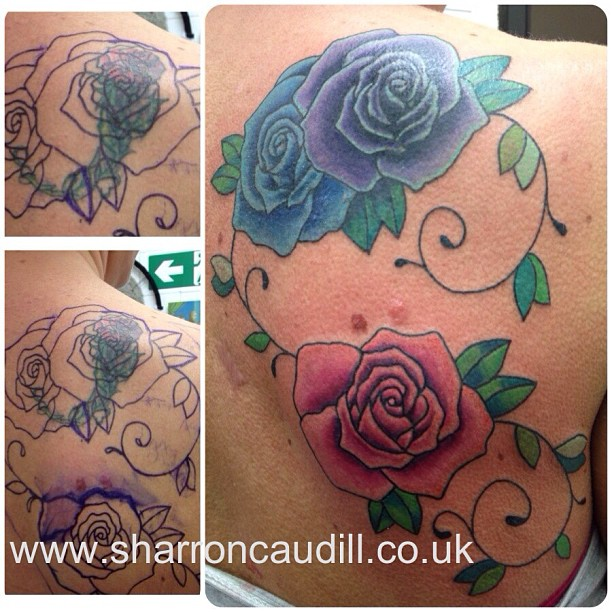 rose rose cover up
